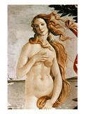 Aphrodite/Venus Premium Giclee Print by Sandro Botticelli