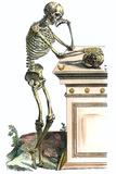 Vesalius: Skeleton, 1543 Giclée-Druck von Andreas Vesalius