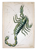 Constellation: Scorpio Giclee Print by Sidney Hall