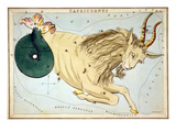 Constellation: Capricorn Posters by Sidney Hall