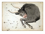 Constellation: Taurus Giclee Print by Sidney Hall