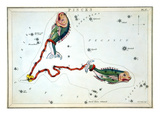Constellation: Pisces Premium Giclee Print by Sidney Hall
