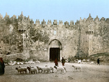 Jerusalem: Damascus Gate Photographic Print