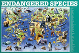 Endangered Species Prints