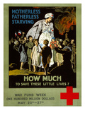 Red Cross Poster, 1917 Posters