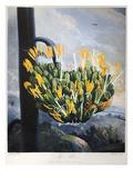 Thornton: Aloe Prints by Caldwall
