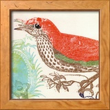 Red Bird Poster by Swan Papel