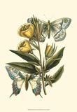 Butterfly Oasis II Art