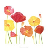 Simply Poppies I Print by Megan Meagher