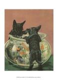 Terrier Trouble VI Print
