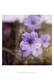Purple Tranquility II Print by Emily Robinson