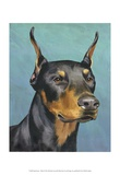 Dog Portrait, Dobie Art by Jill Sands