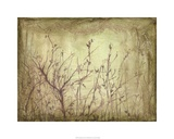 Dancing Branches II Premium Giclee Print by Jennifer Goldberger