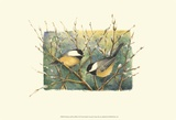 Chickadees and Pussy Willow Art par Janet Mandel