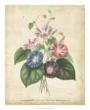 Victorian Bouquet I Giclee Print by  Maubert