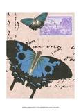 Le Papillon Script V Prints