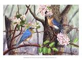 Pájaros azules Láminas por Al Dornish