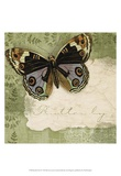 Butterfly Notes IV Art