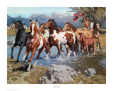 Native Wealth Art by David Mann