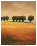 Pollard Willow II Art by Graham Reynolds