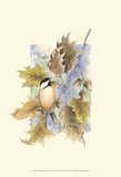 Chickadee and Oak Leaves Prints by Janet Mandel