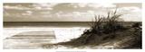 Boardwalk Shadows Prints by Noah Bay