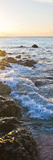Bimini Coastline Poster by Susan Bryant
