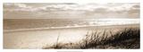 Ozono (serigrafía) Pósters por Noah Bay