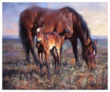 The Bay Filly Prints by Jack Sorenson