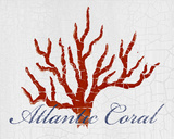 Atlantic Coral Plakater af Hakimipour-ritter