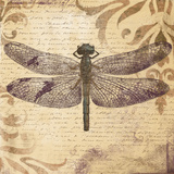Dragonfly Posters by Patricia Quintero-Pinto