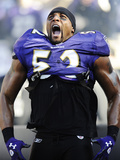 Baltimore Raven and Houston Texans: Ray Lewis Photographic Print by Nick Wass