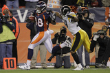 Denver Broncos and Pittsburgh Steelers: Demaryius Thomas and Ryan Mundy Photo by Joe Mahoney