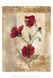Red Poppies III Posters by Marianne D. Cuozzo