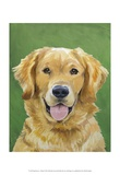 Dog Portrait, Golden Art by Jill Sands