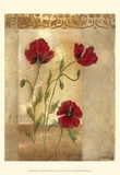 Red Poppies IV Prints by Marianne D. Cuozzo