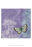 Butterfly Notes VIII Print