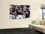 Houston Texans and Cincinnati Bengals: Brooks Reed, Quintin Demps Wall Mural by Tony Gutierrez