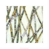 Lemongrass I Premium Giclee Print by Jarman Fagalde