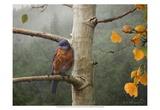 Bluebird Rain Posters par Chris Vest