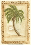 Licuala Grandis Palm Prints by Marianne D. Cuozzo