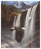 Adlerportrait Kunstdrucke von Leo Stans