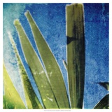 Tropical Memory II Prints by Emily Robinson