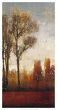 Tall Trees II Prints by Tim O&#39;toole