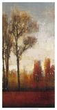 Tall Trees II Prints by Tim O'toole