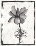 Sumi-e Floral IV Prints by Ethan Harper