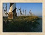 Sea Oats Bending in Wind Near the Cape Hatteras Lighthouse Framed Photographic Print by Steve Winter