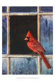 Cardinal Window Kunstdruck von Chris Vest