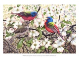 Painted Bunting Art by Al Dornish
