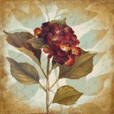 Aubergine Hydrangea Portrait Art by Lanie Loreth